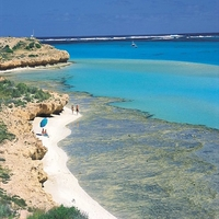 Top Beaches with Corals in the World