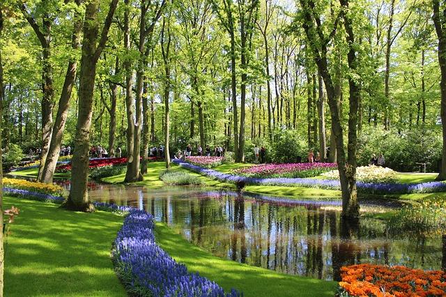 best tulip gardens in netherlands