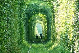 Most Romantic Places in Ukraine