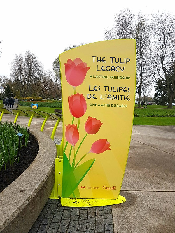 Ottawa Tulip Festival 2019